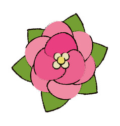 Flower decoration floral icon vector