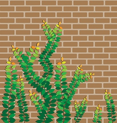 Green leaves on the brick wall vector image
