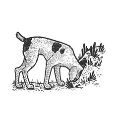 hunting dog looking for fox in hole sketch vector image