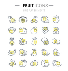 Set Flat Line Icons Fruit vector