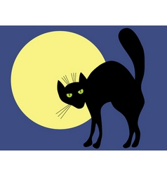 cat and moon vector image