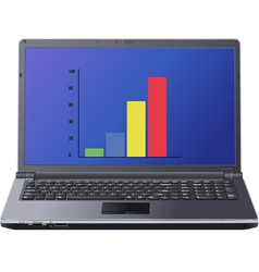graph on laptop screen vector image
