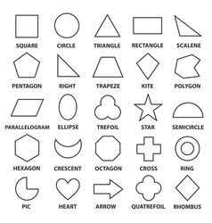 basic geometric shapes vector image