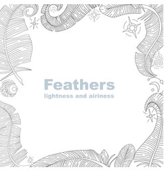 Feathers frame vector