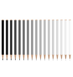 grey pencils vector image