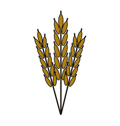 harvest of wheat symbol vector image vector image