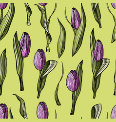 seamless pattern hand-drawn lilac tulips vector image