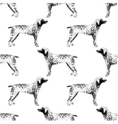 Seamless pattern with hand drawn german vector