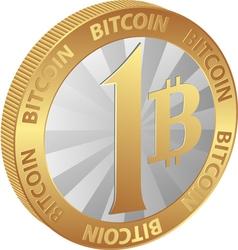 bitcoin23a1 vector image vector image