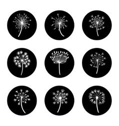 Black and white dandelion icon set vector image vector image