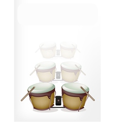 Bongo Drum with Sticks on White Background vector image