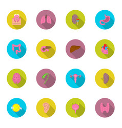 Icon set human organs in flat style with shadow vector