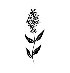 minimalist tattoo flower stem petals silhouette vector image