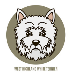Portrait of west highland white terrier vector