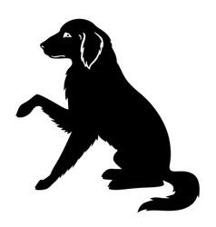 Silhouette a big dog golden retriever vector