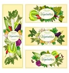 Vegetables organic vegetarian food banners vector image