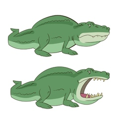 crocodile alligator vector image