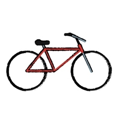 drawing bicycle transport active sport vector image