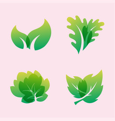 Green leaf eco design friendly nature elegance vector
