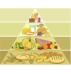 Healthy food pyramid vector