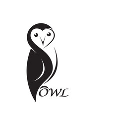owl design on white background bird animals vector image