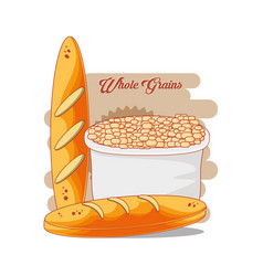 whole grains healthy product vector image