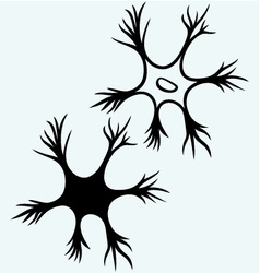 Neuron icon vector image vector image