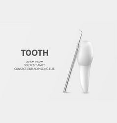 3d realistic tooth and dental probe vector image