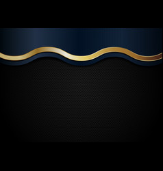 abstract blue and golden wave line stripes on vector image