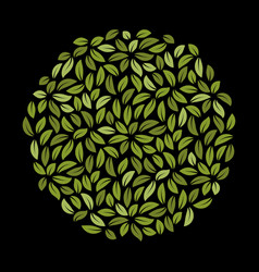 circle with green leaves template foliage pattern vector image
