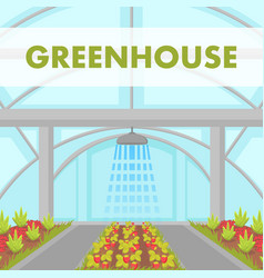 cultivation house irrigation system poster vector image