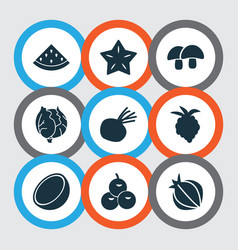 food icons set with clove cocoanut raspberry and vector image