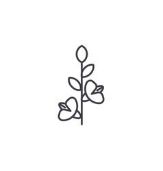 gladiola line icon concept gladiola flat vector image