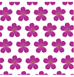 Plumeria flower purple wallpaper decoration vector