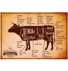 Poster with detailed diagram cutting cows vector