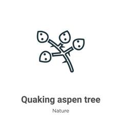 Quaking aspen tree outline icon thin line black vector