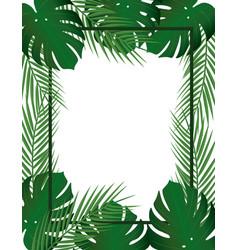 tropical leaf frame vector image