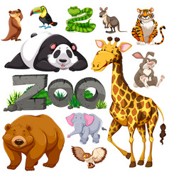 Zoo and different types of wild animals vector