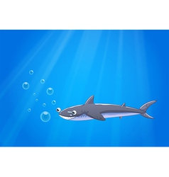 A shark under the sea vector image vector image