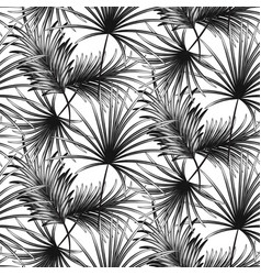 grayscale palm leaves seamless pattern vector image