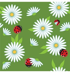 daisies and ladybugs vector image vector image