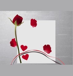 Bright red rose with petals on paper on a gray bac vector