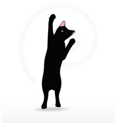 Cat silhouette in Reach pose vector