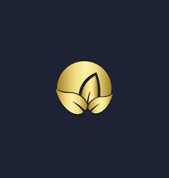 gold leaf eco logo vector image