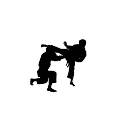 Karate sport activity silhouettes vector