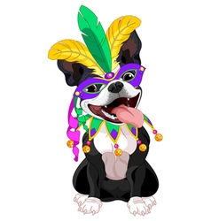 Mardi Gras Boston Terrier vector image vector image