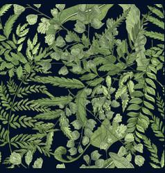 fern green foliage on black background hand drawn vector image