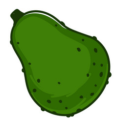 Avocado pear ripe vegetable with peel exotic fruit vector