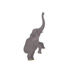 Big gray elephant standing on hind legs wild vector
