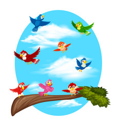 birds flying on sky vector image